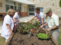 Jardin therapeutique en geriatrie